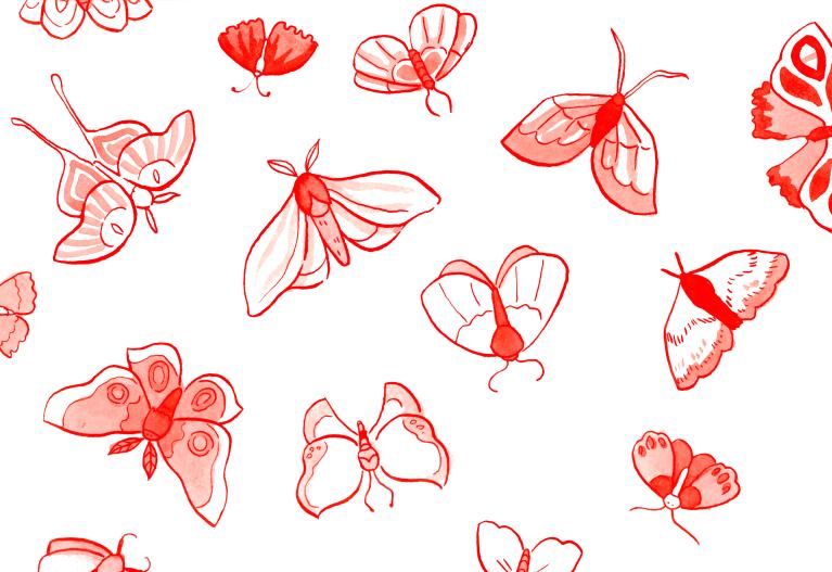 moths_002
