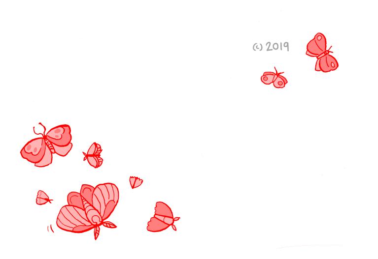 moths_016